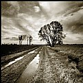 Picture Title - nameless | road -