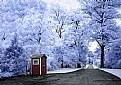 Picture Title - Winterfresh