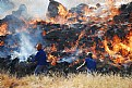 Picture Title - Grass Fire