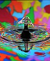 Picture Title - Water Carnival