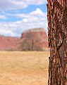 Picture Title - Ghost Ranch 4