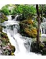 Picture Title - Plitvicka jezera