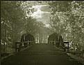 Picture Title - Howards Creek Bridge
