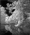 Picture Title - Downstream Reflection