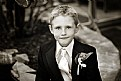 Picture Title - The Ring Bearer