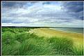 Picture Title - Coastline
