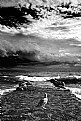 Picture Title - shore
