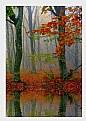 Picture Title - Autumn Lake