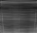 Picture Title - Venetian Blinds -- Do Not Stare!!!