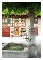 Picture Title - Klosterfahr bei Dietikon / CH