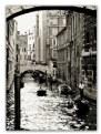 Picture Title - under the bridge
