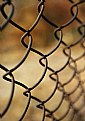 Picture Title - fence