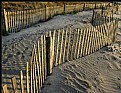 Picture Title - Dune fence