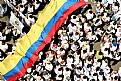 Picture Title - NO MAS FARC