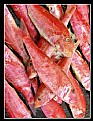 Picture Title - Fresh Fish