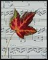 Picture Title - Autumn Serenade