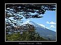 Picture Title - Vulcão Osorno