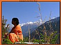 Picture Title - Meditation