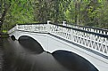 Picture Title - Bridge