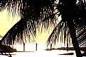 Picture Title - Caribbean Paradise