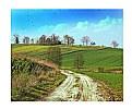Picture Title - Polish Landscape