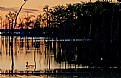 Picture Title - Sunrise on the Pond