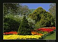 Picture Title - Longwood Gardens (d2185)