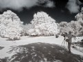 Picture Title - IR Photographer