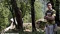 Picture Title - roudkhan castle,قلعه رودخان