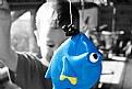 Picture Title - Fishing for Dori