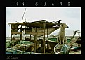 Picture Title - On guard