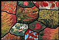 Picture Title - Fall Leaf Collage