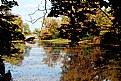 Picture Title - Autumnal colours