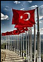 Picture Title - Republic Day