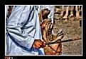 Picture Title - Black stick