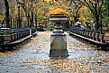 Picture Title - Central Park, NY