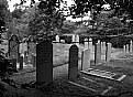 Picture Title - Jewish Cemetery