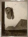 Picture Title - lifecatcher