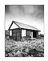 Newton Beach Hut