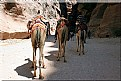 Picture Title - Journey to Jordan (2.)