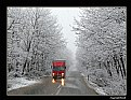 Picture Title - snow and Truck....