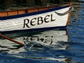 Picture Title - The Rebel