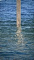Picture Title - Harridge Pole