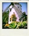 Picture Title - Polaroid Windmill
