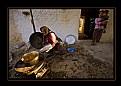 Picture Title - Taze Fasülye