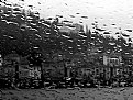 Picture Title - Rainy