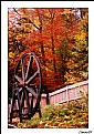 Picture Title - The Wheel and the Autumn