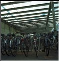 Picture Title - Bikes in the hangar