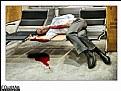 Picture Title - - Slain -