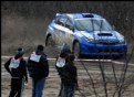 Picture Title - Observing A Rally